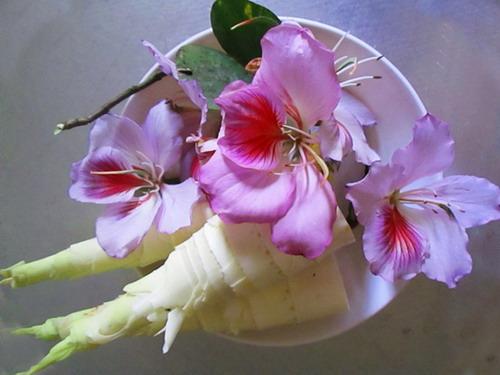 Măng đắng và hoa ban là sự kết hợp tuyệt vời