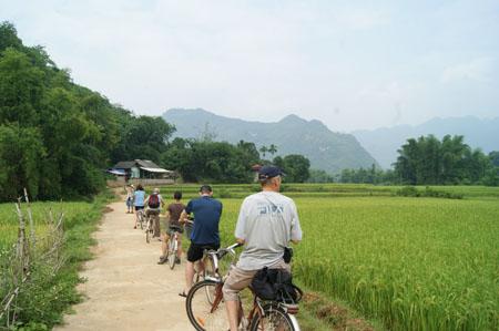 Thuê xe đạp- hình thức khám phá được nhiều du khách lựa chọn khi tới Mai Châu
